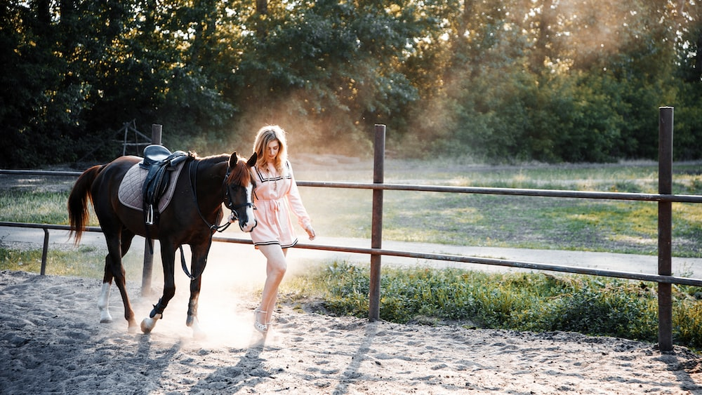 girl in pink jacket riding on black horse during daytime