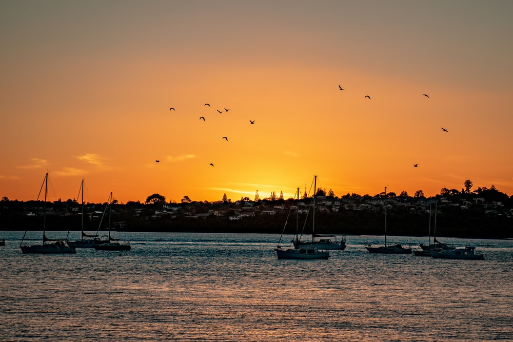 silhouette of boats on sea during sunset