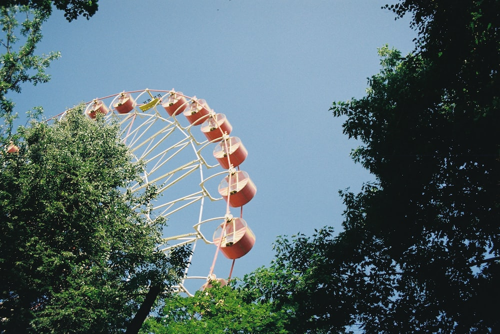 white and brown ferris wheel under blue sky during daytime