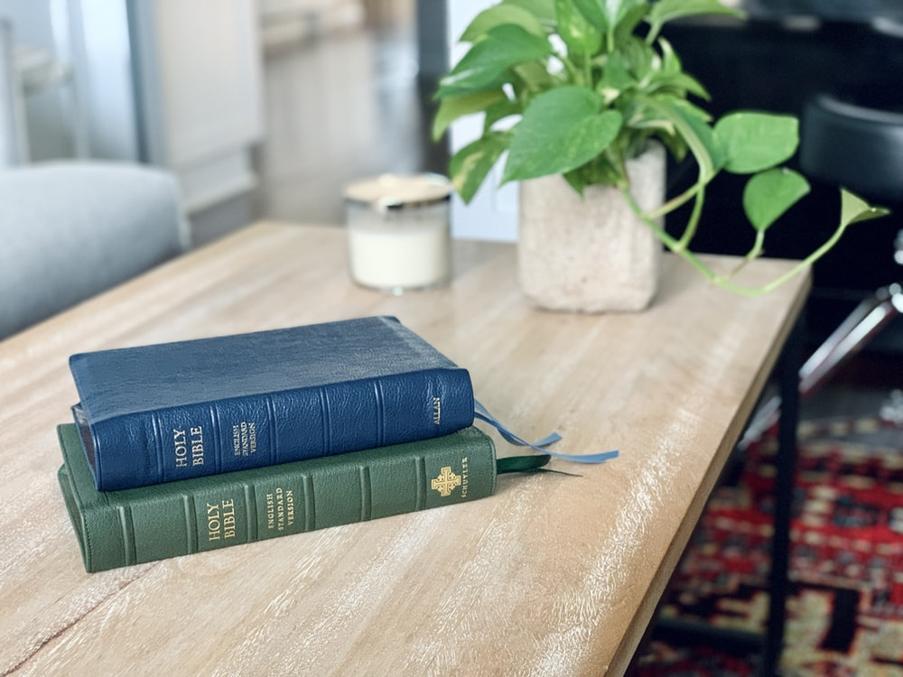 blue and green hardbound books on brown wooden table