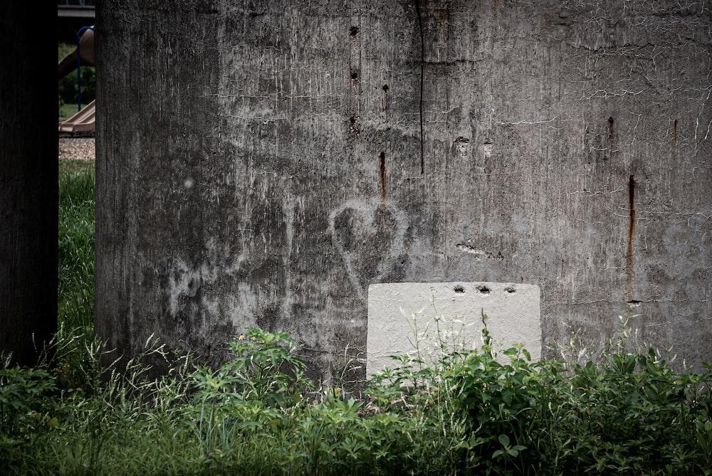 white concrete brick on green grass
