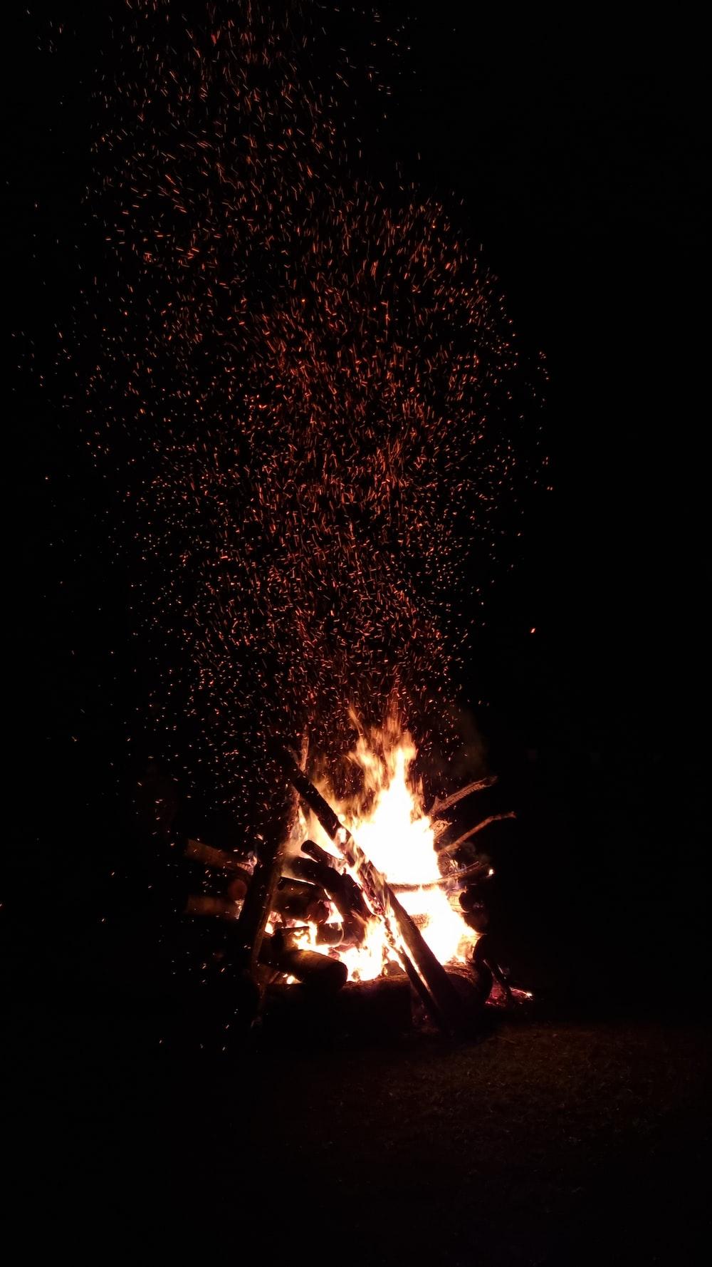 bonfire under starry night sky