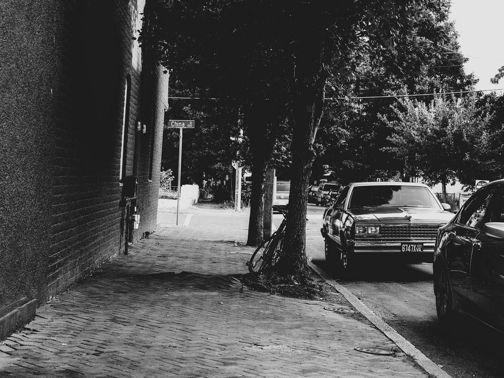 grayscale photo of car parked beside tree