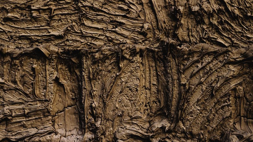 brown and black wood log