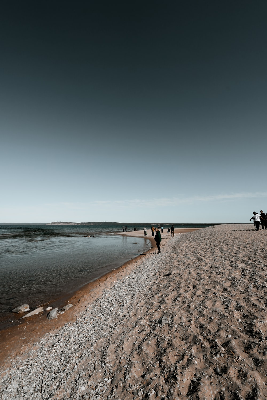 people walking on beach during daytime