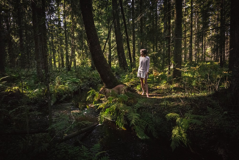 man in white t-shirt standing on brown tree log in forest during daytime