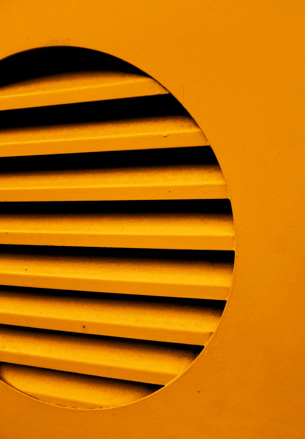 yellow and white wooden ceiling
