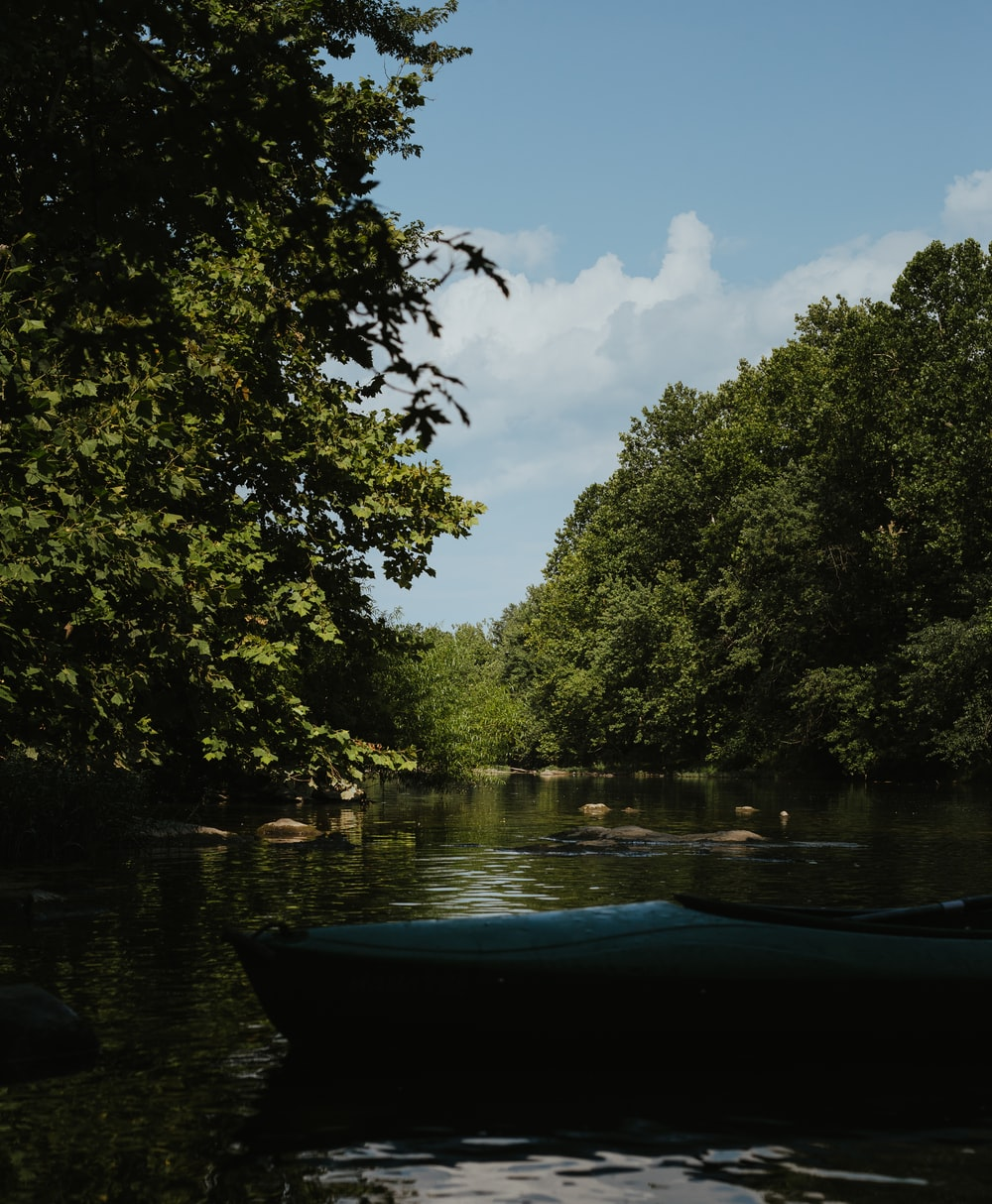 blue boat on river between green trees during daytime