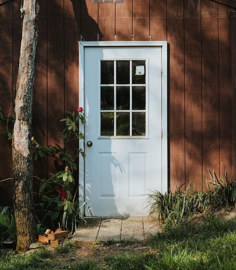 white wooden door beside brown tree trunk