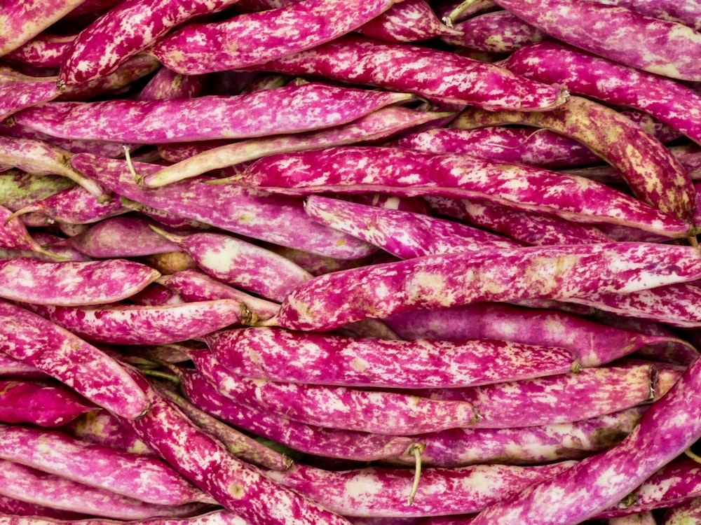 purple and brown chili peppers