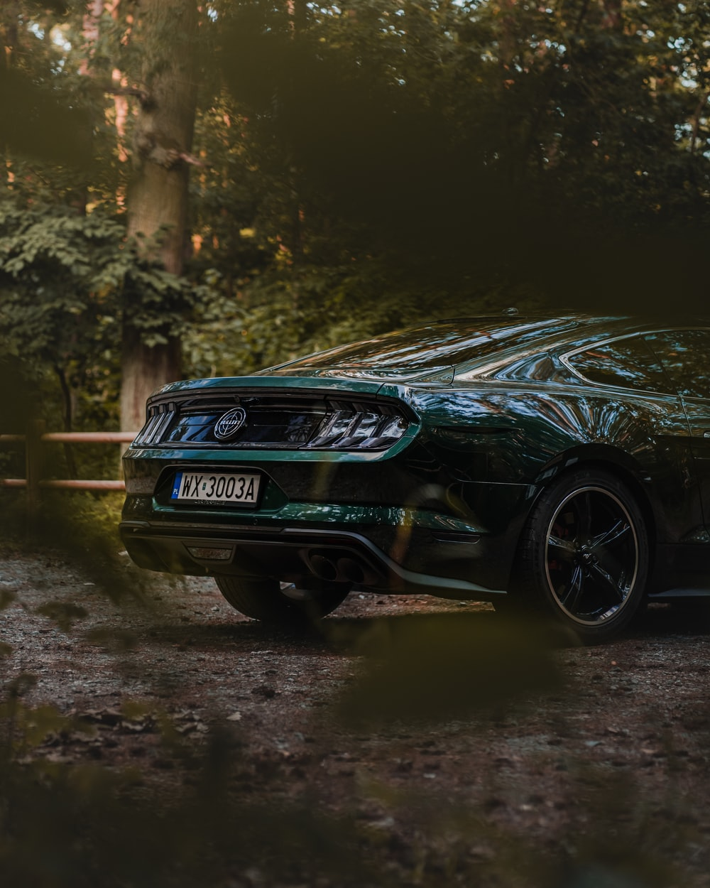 black bmw m 3 coupe on forest