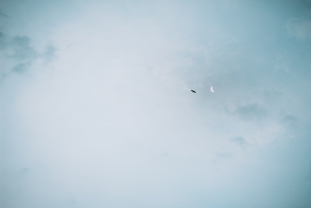airplane in mid air under cloudy sky during daytime