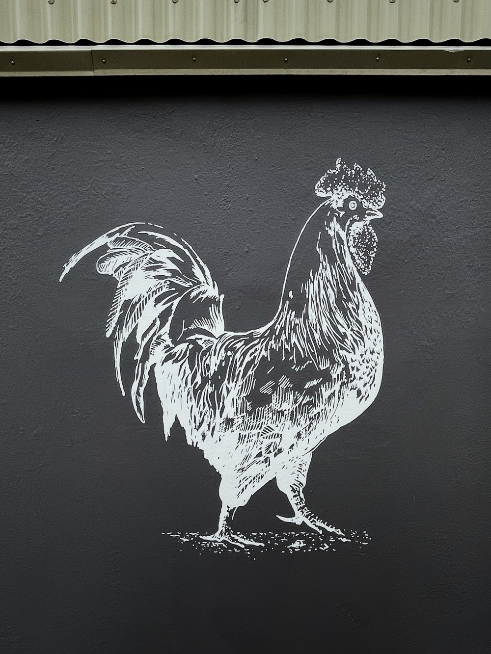 black and white rooster illustration