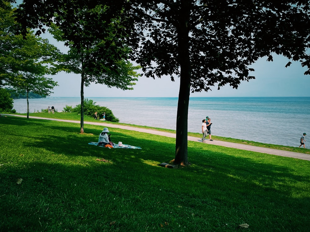 people sitting on green grass field near body of water during daytime