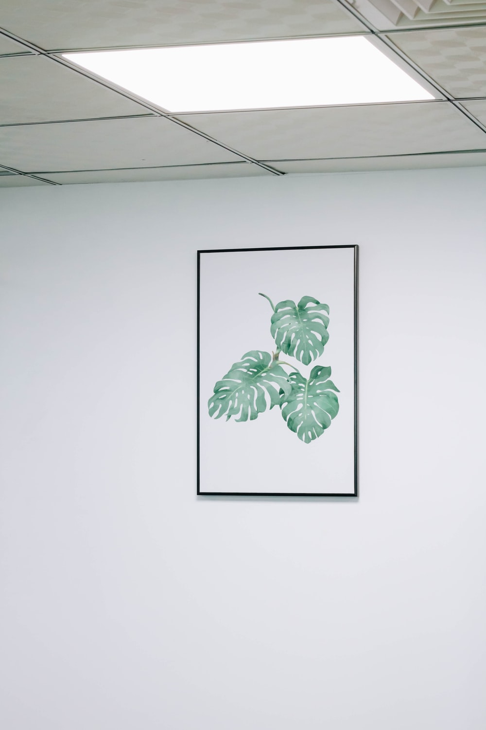 green leaf painting on white wall