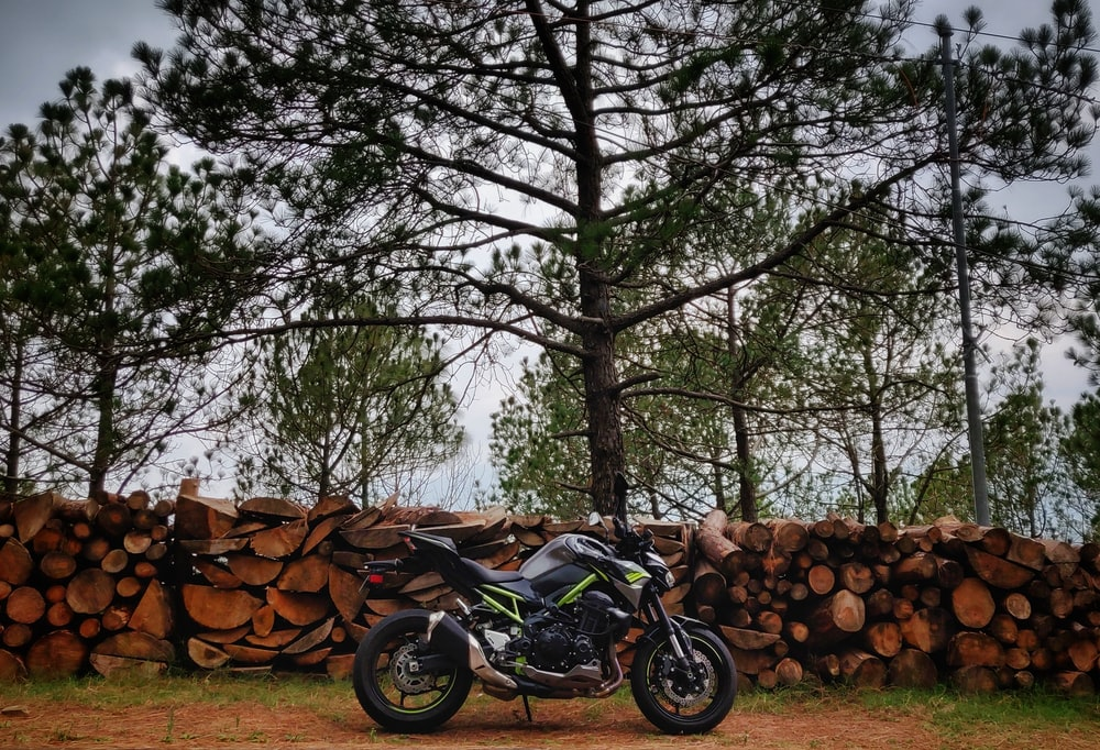 black motorcycle parked beside tree logs