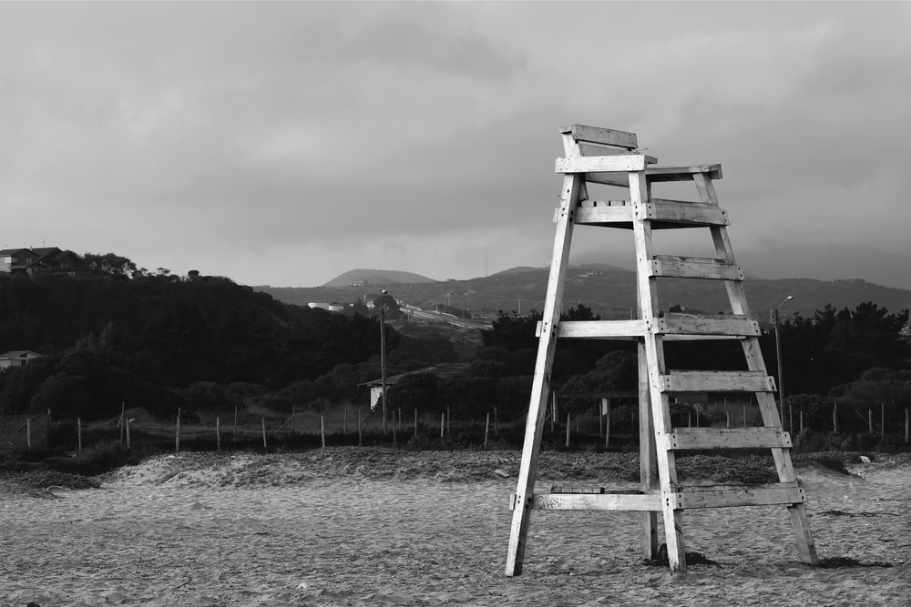 grayscale photo of wooden ladder on field