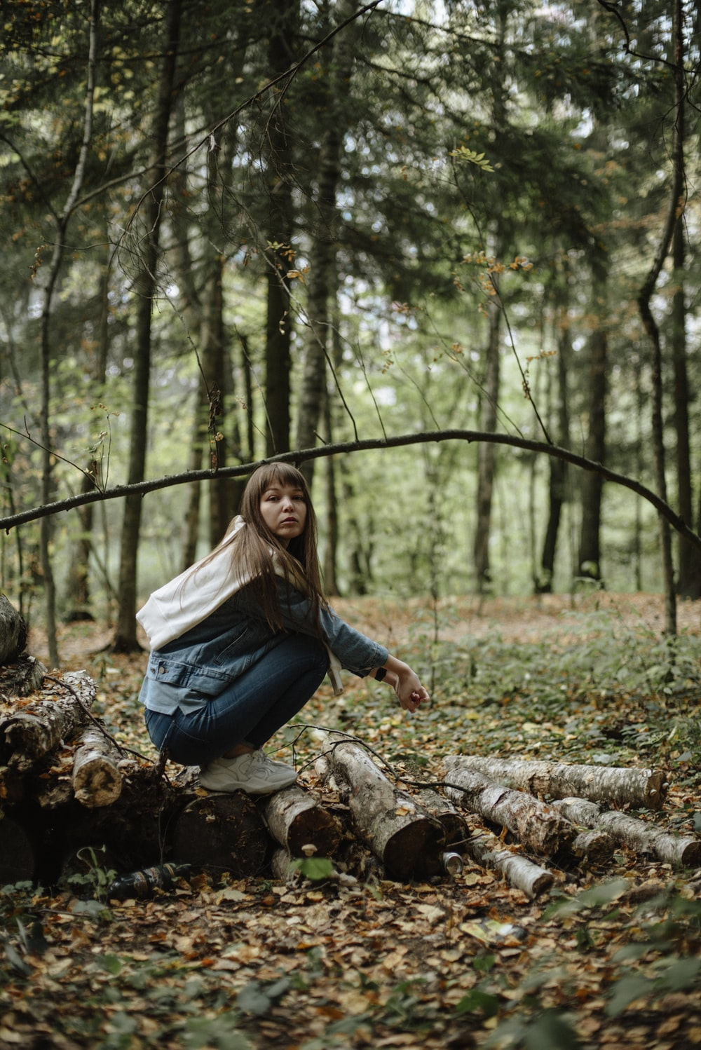 woman in blue long sleeve shirt sitting on brown log in forest during daytime