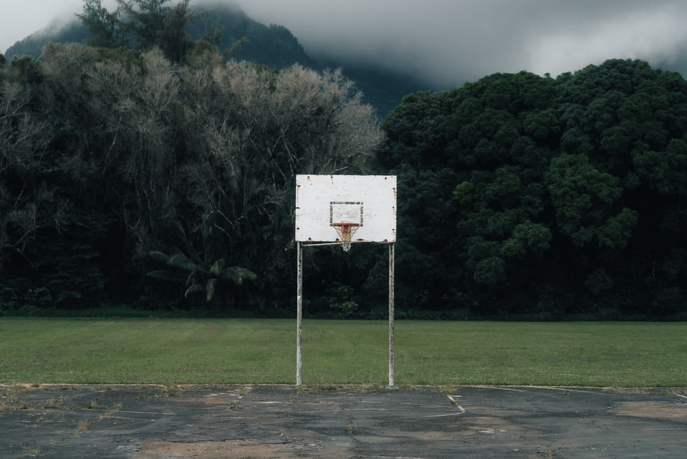 white and gray basketball hoop near green trees during daytime