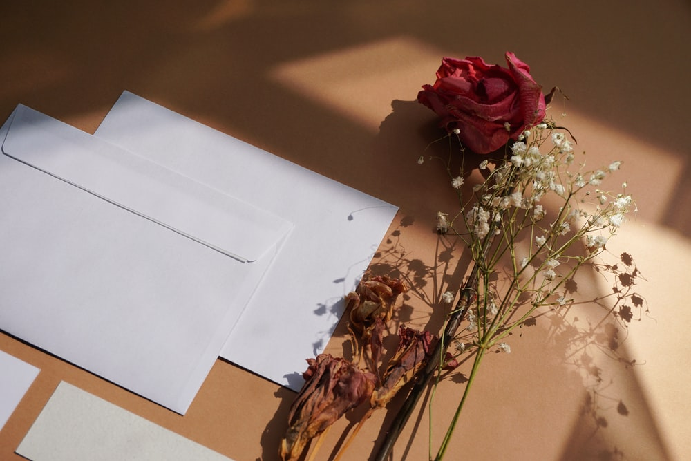 red rose bouquet beside white printer paper