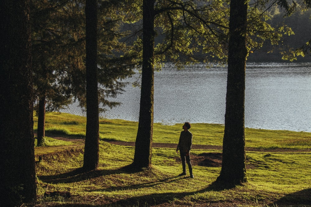 silhouette of man standing near body of water during daytime