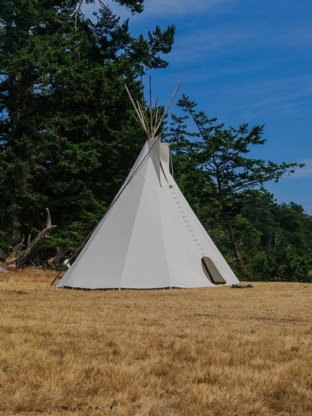 white tent on brown grass field during daytime