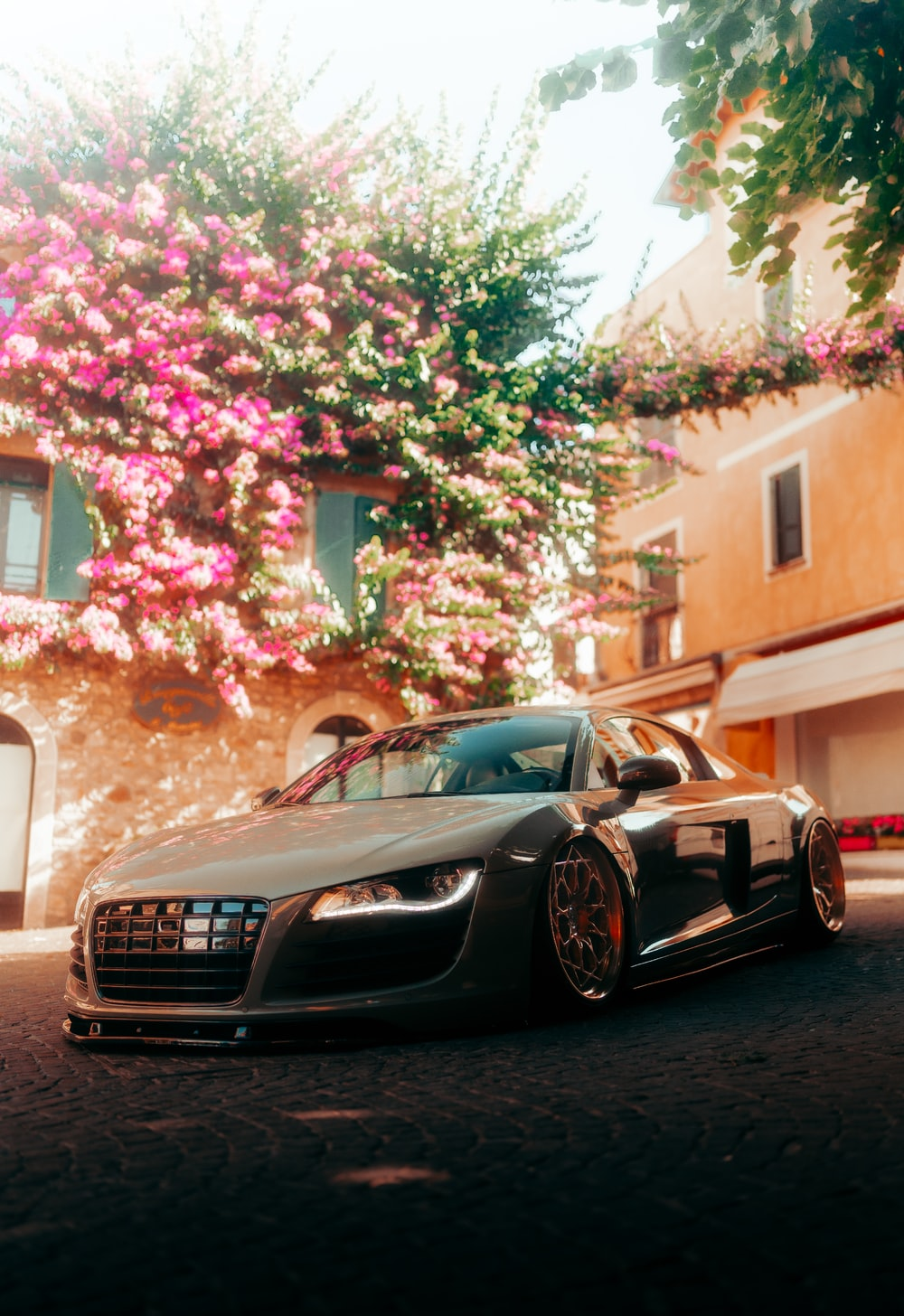 black bmw m 3 coupe parked near pink and white flower tree during daytime