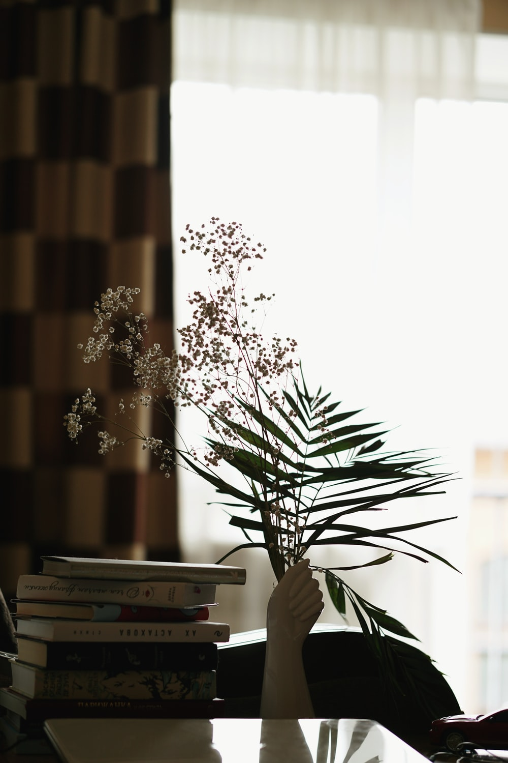 green plant beside brown and white curtain