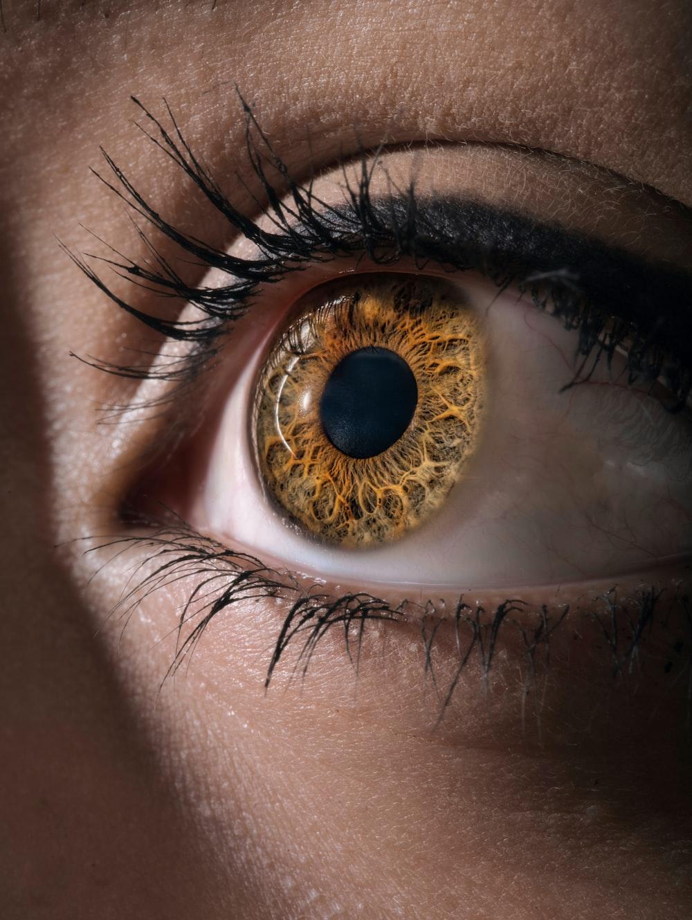 persons brown eyes with brown eyes