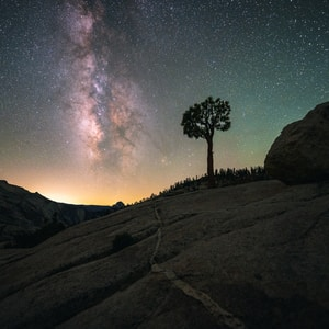 silhouette of trees on hill under starry night