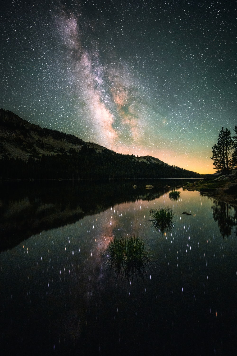 green trees near lake under blue sky with stars during night time