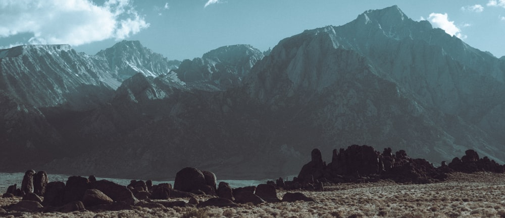 silhouette of people sitting on ground near mountains during daytime