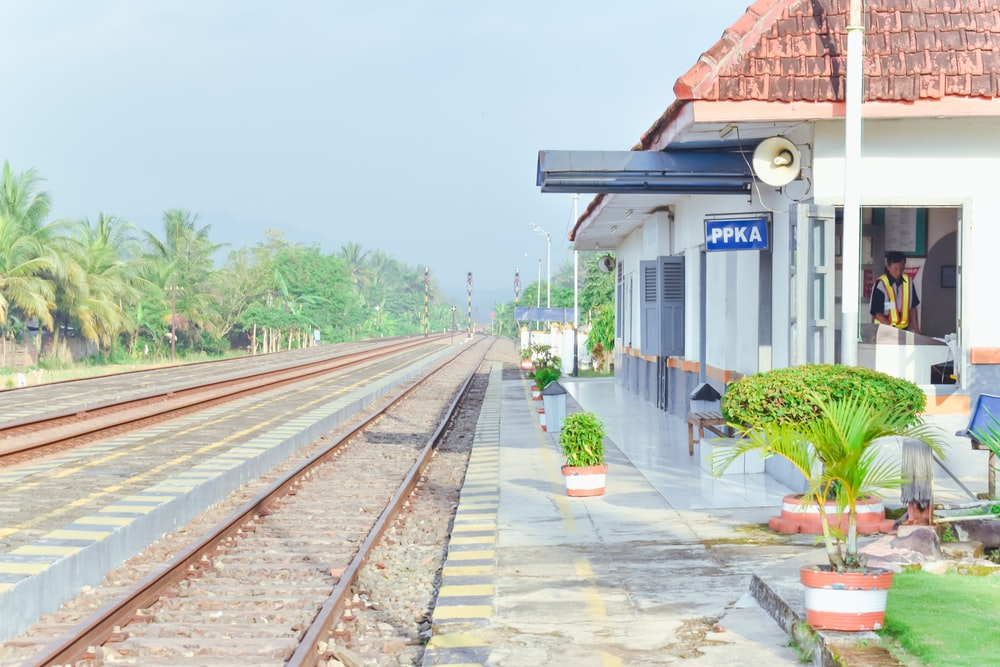 train rail near green plants during daytime