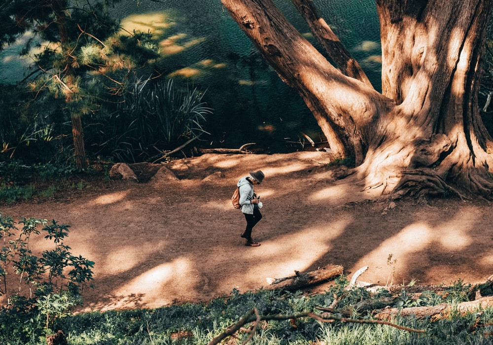 boy in white shirt and black pants walking on brown dirt road near green trees during