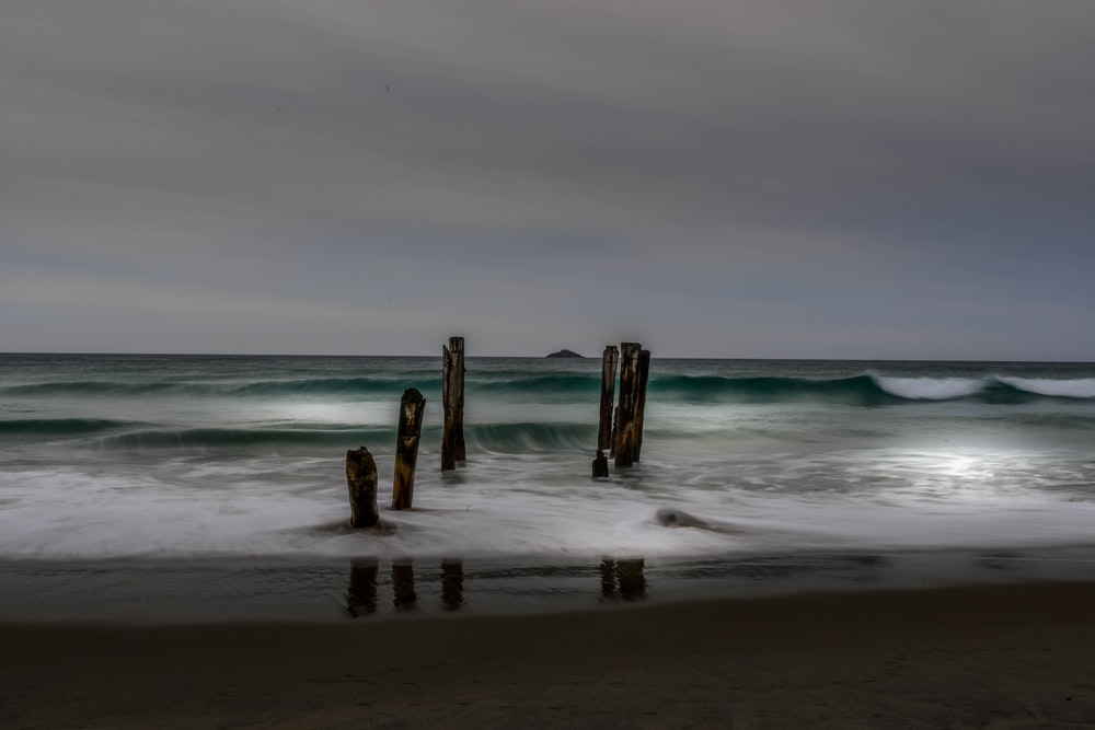 brown wooden posts on beach during daytime