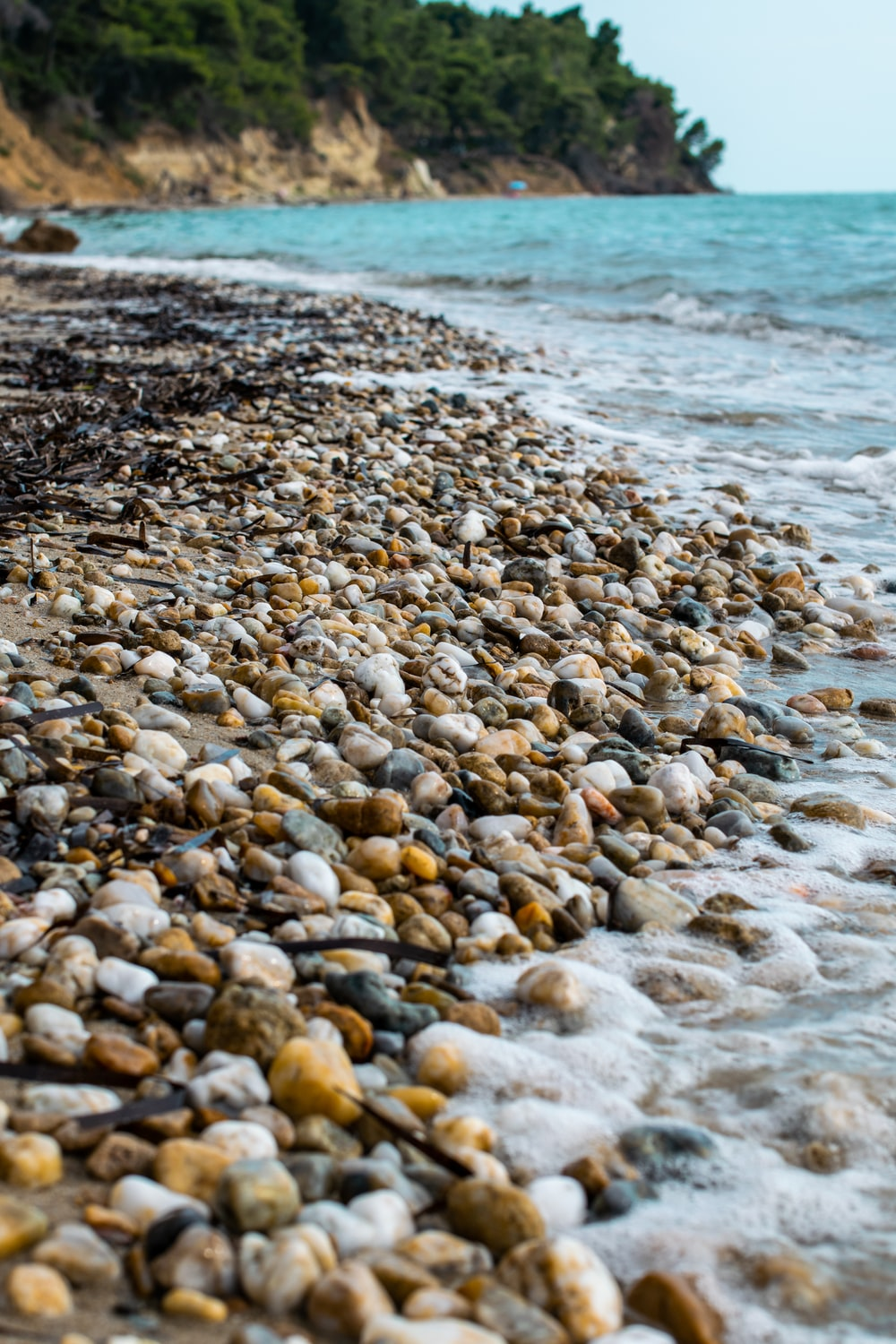 brown and white stones on seashore during daytime