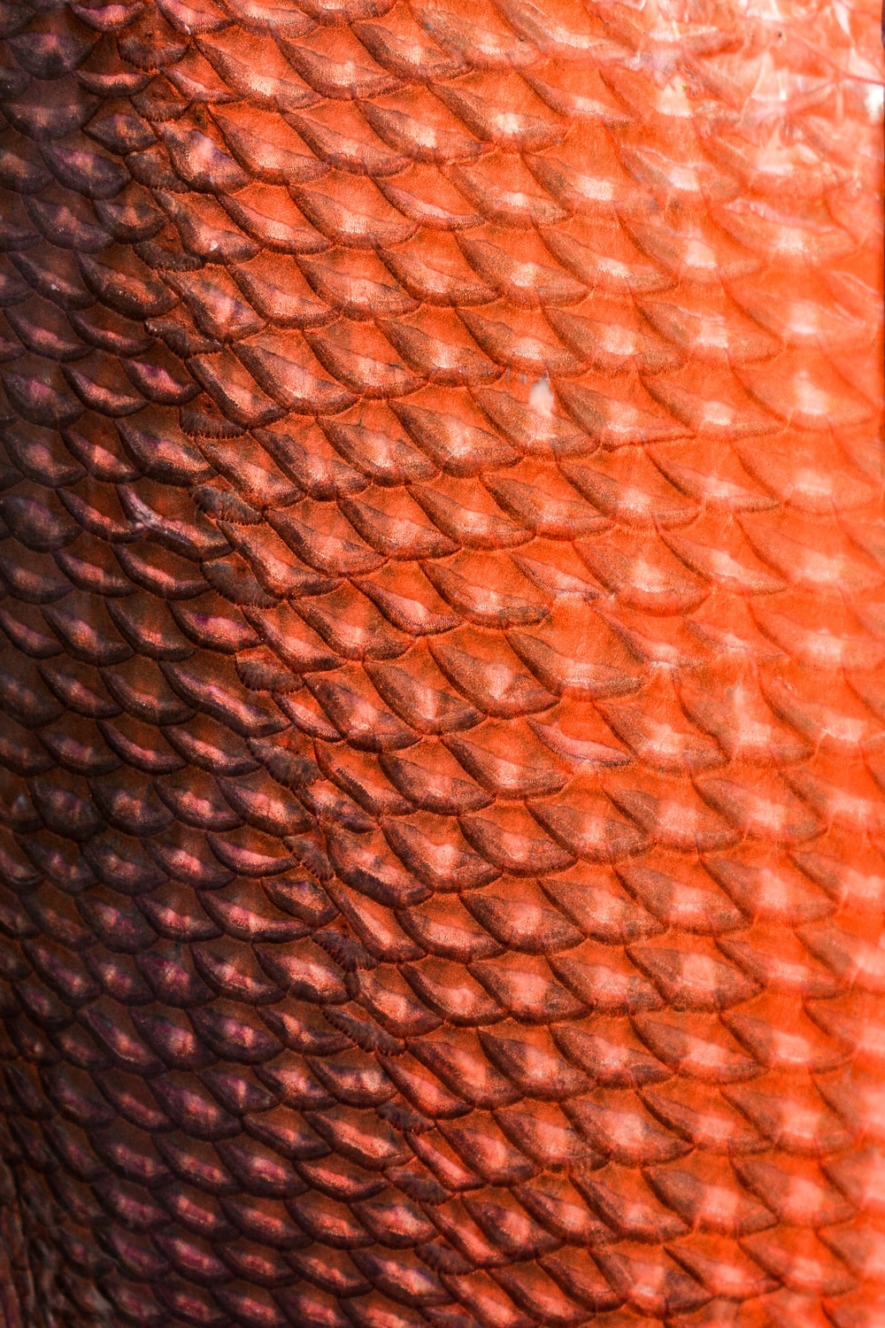 brown and white textile in close up image
