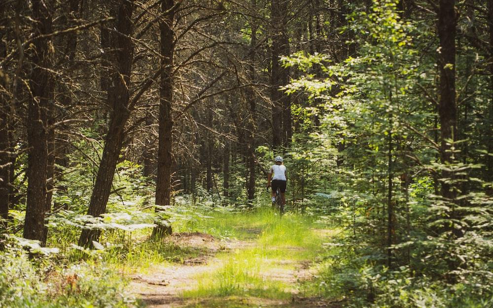 man in white shirt walking on dirt road between trees during daytime