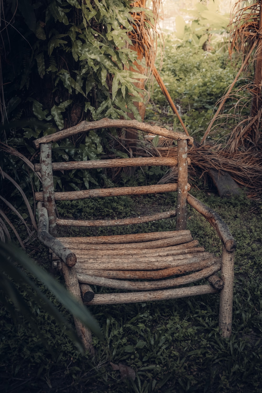 brown wooden chair on forest during daytime