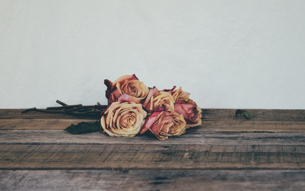 pink roses on brown wooden table