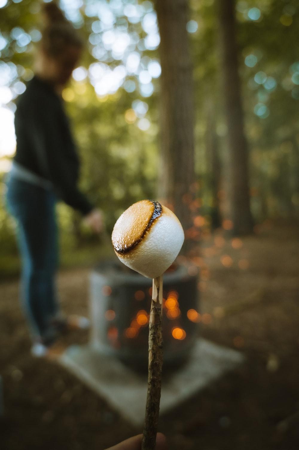 brown mushroom in tilt shift lens
