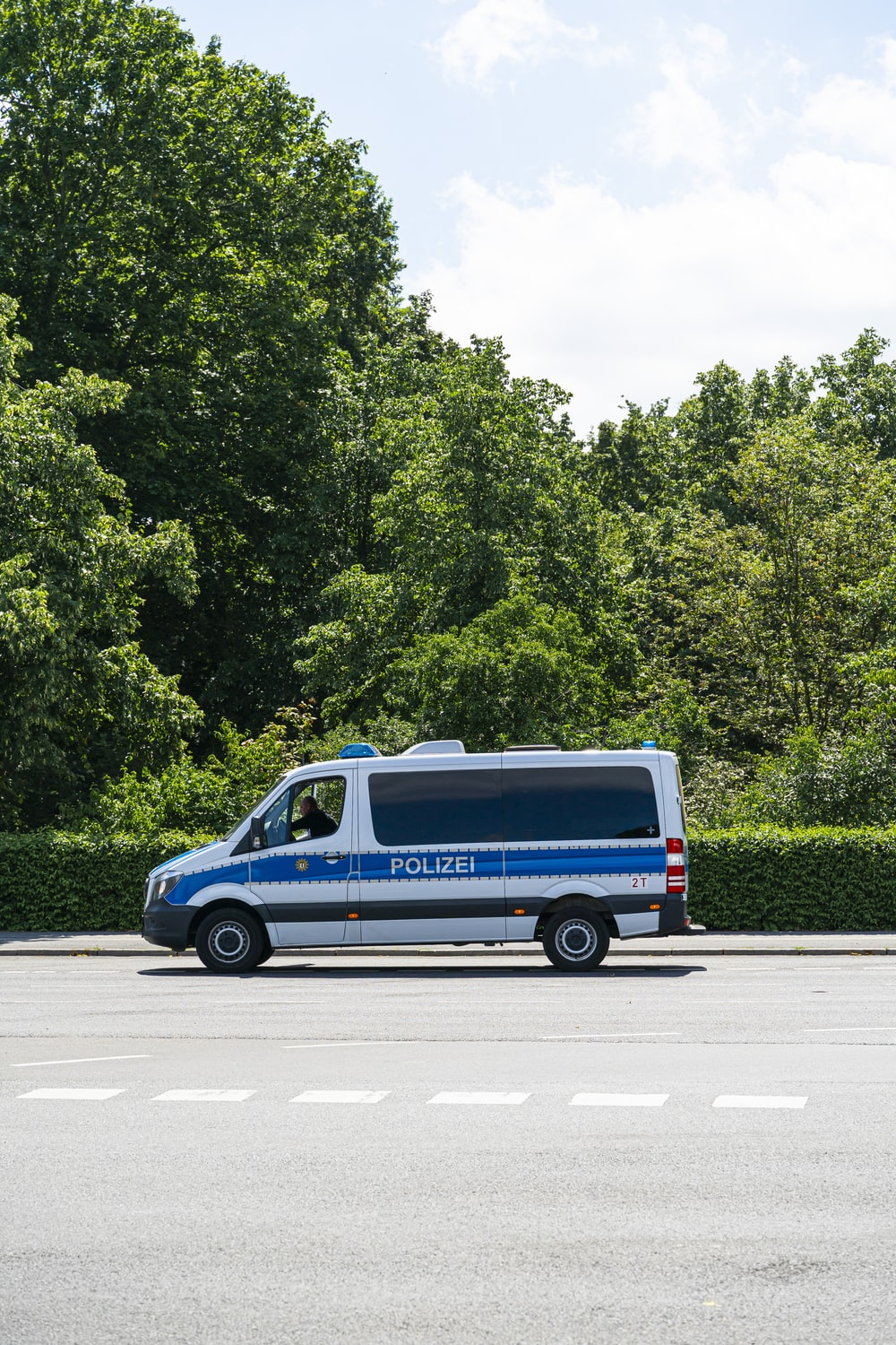 blue and white van on road near green trees during daytime