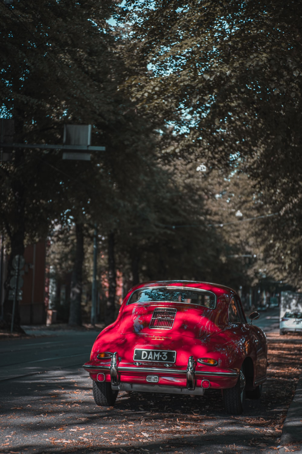 red car on road near trees during daytime