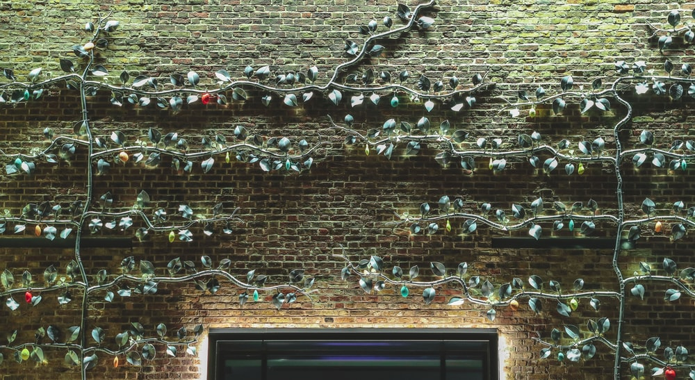 brown brick wall with white string lights