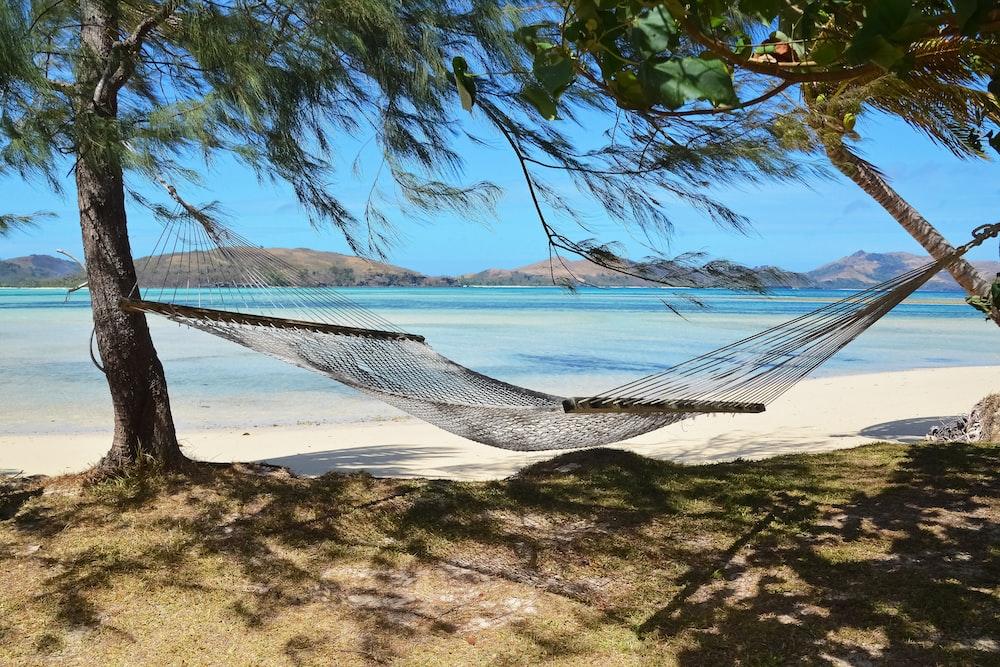 white hammock on beach during daytime
