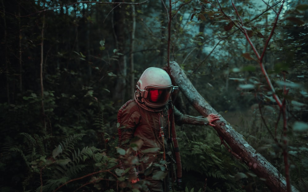 person in brown and black camouflage jacket wearing white helmet standing on brown tree branch during