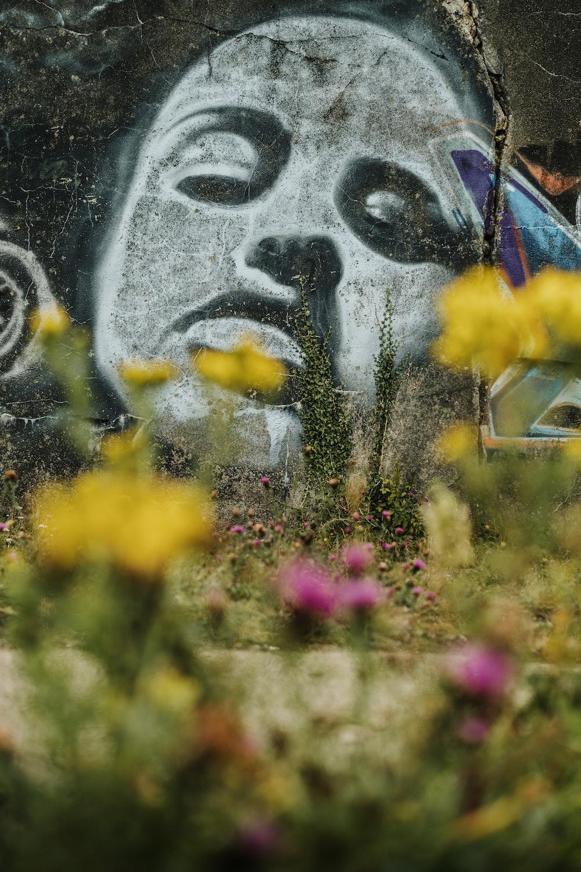 yellow flowers beside gray wall
