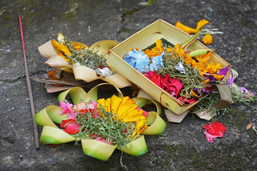 yellow and pink flowers in brown wooden box
