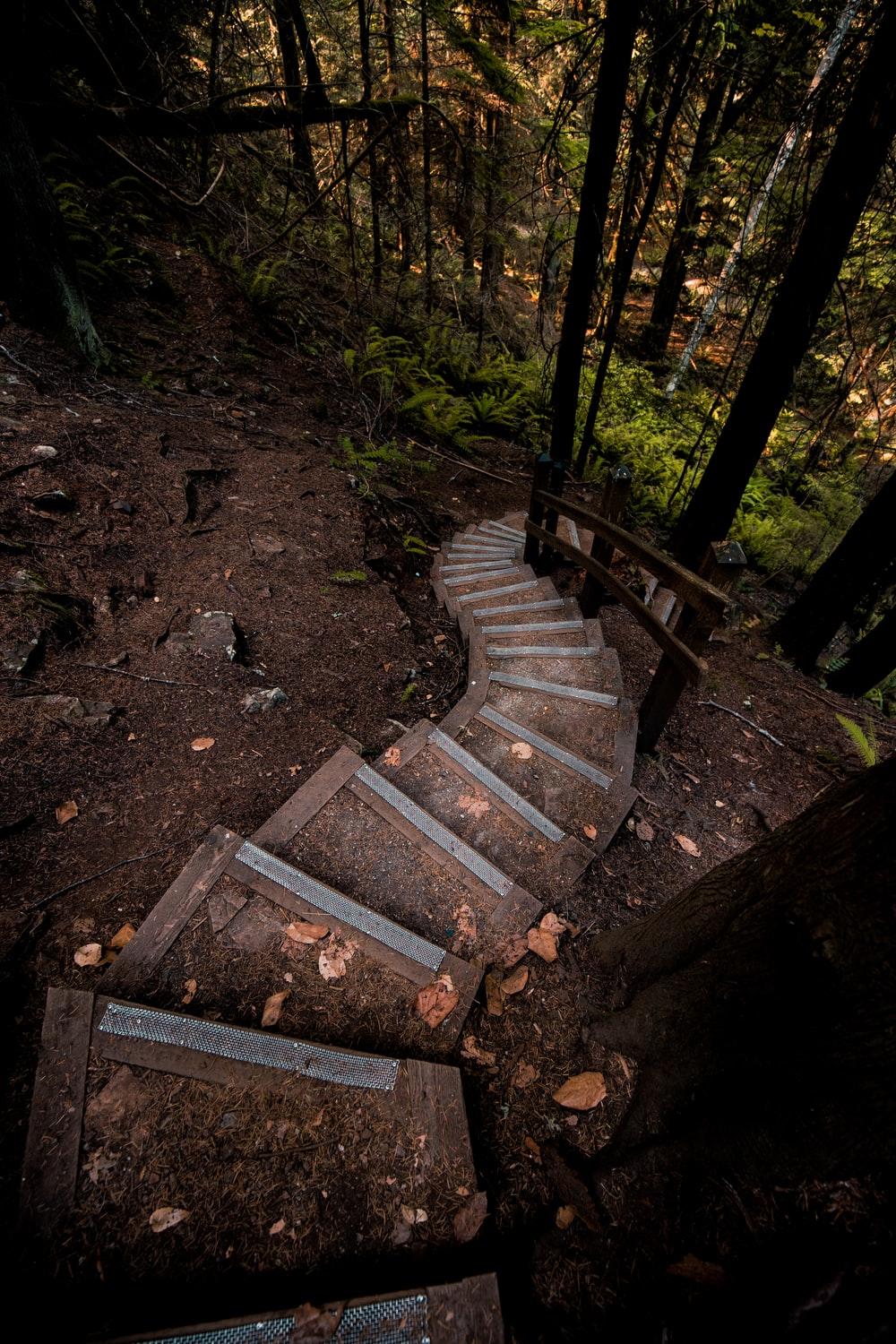 brown wooden stairs on brown soil
