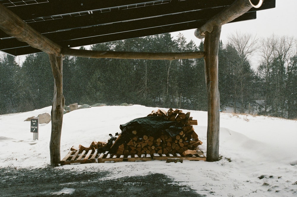 brown wood logs on snow covered ground